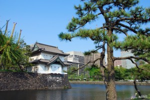 Private Day Trips in Japan