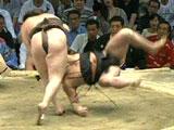ReadyClickAndGo in Japan, Sumo