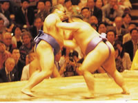 ReadyClickAndGo, sumo in Japan